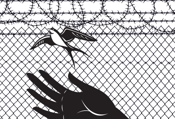 illustration: hand releasing sparrow from barbed wire background (iStockphoto)