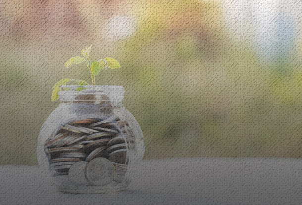 Plant growing from jar of coins (iStockphoto)